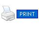 Flash Print Button