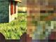 Image transition pixelation effect